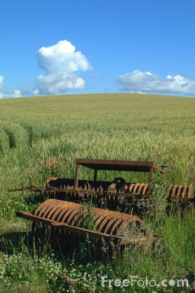 Picture of Rusty Disc Harrow - Free Pictures - FreeFoto.com