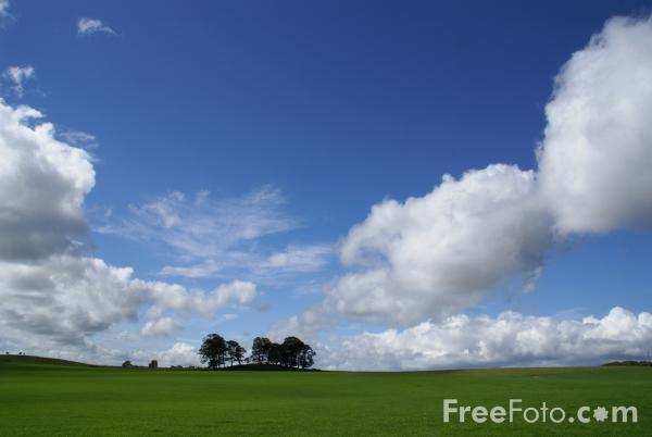 Picture of Green Fields - Free Pictures - FreeFoto.com