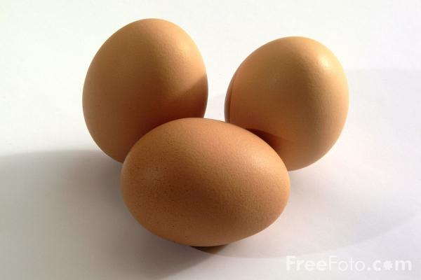 Eggs Pictures Free Use Image 09 04 13 By Freefoto Com