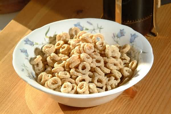 Picture of Breakfast Cereal - Free Pictures - FreeFoto.com