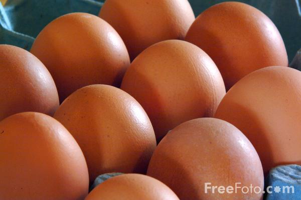 Picture of Eggs - Free Pictures - FreeFoto.com