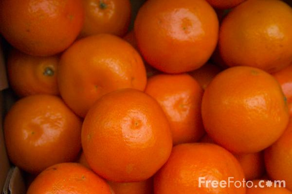 Picture of Fruit - Oranges - Free Pictures - FreeFoto.com