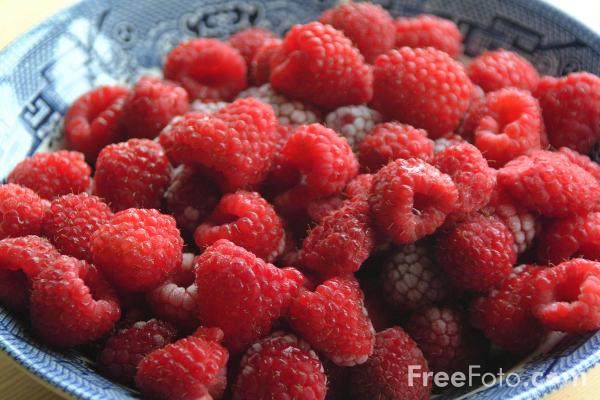 Picture of Fruit - Raspberries - Free Pictures - FreeFoto.com