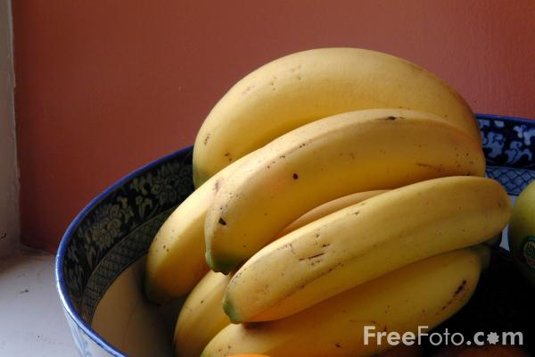 Picture of Fruit - Bananas - Free Pictures - FreeFoto.com