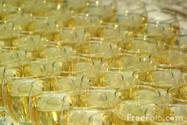 Picture of Glasses of White Wine - Free Pictures - FreeFoto.com