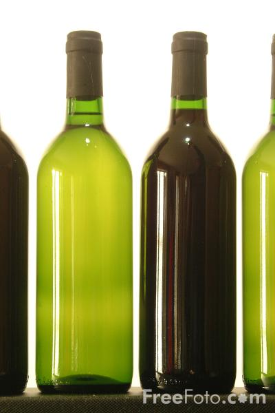 Picture of Wine Bottles - Free Pictures - FreeFoto.com