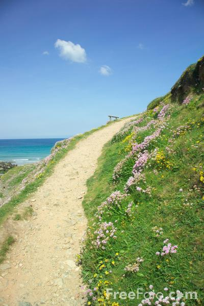 Picture of Coastal Footpath, Chapel Porth, Cornwall - Free Pictures - FreeFoto.com