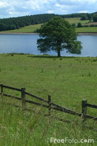 Picture of Derwent Reservoir, County Durham - Free Pictures - FreeFoto.com