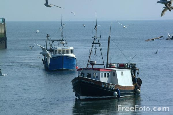 Picture of Fishing Boats, Hartlepool - Free Pictures - FreeFoto.com