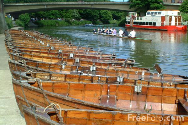 Picture of Rowing Boats, River Wear, The City of Durham - Free Pictures - FreeFoto.com