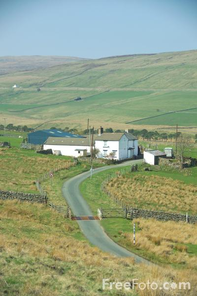 Picture of Upper Teesdale - Free Pictures - FreeFoto.com