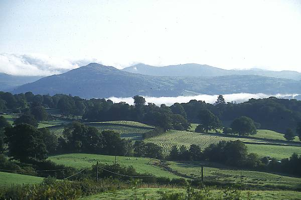 Picture of Hawkshead - Free Pictures - FreeFoto.com