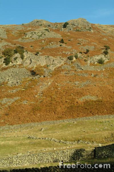 Picture of Brown Crag, Cumbria - Free Pictures - FreeFoto.com
