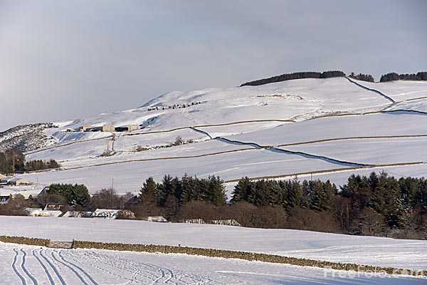 Picture of Winter 2010 in the Scottish Borders - Free Pictures - FreeFoto.com