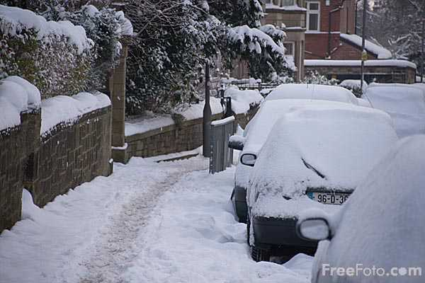 Picture of Snow covered cars - Free Pictures - FreeFoto.com
