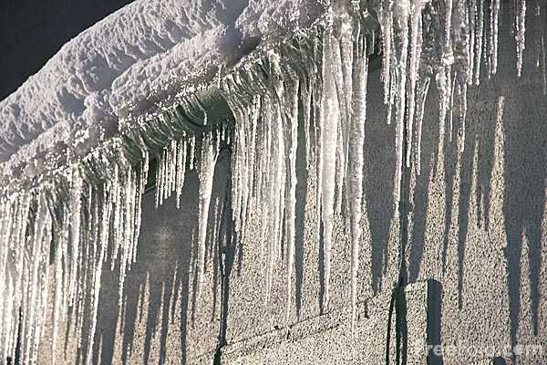 Picture of Icicles - Free Pictures - FreeFoto.com