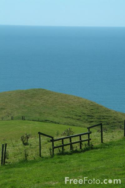 Picture of Dorset Countryside near Abbotsbury, Dorset, England - Free Pictures - FreeFoto.com