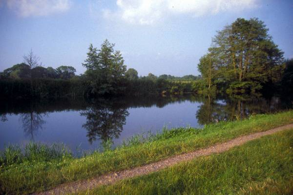 Picture of River Stour, Canford Magna - Free Pictures - FreeFoto.com