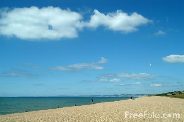 Picture of Chesil Beach - Free Pictures - FreeFoto.com