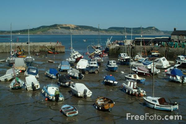 Picture of The Harbour, Lyme Regis, Dorset, England - Free Pictures - FreeFoto.com