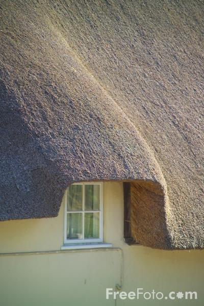 Picture of Thatched Cottage, Tolpuddle, Dorset - Free Pictures - FreeFoto.com