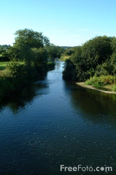 Picture of River Stour, Wimborne Minster - Free Pictures - FreeFoto.com