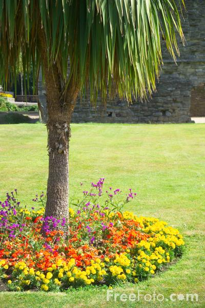 Picture of Park, Christchurch, Dorset - Free Pictures - FreeFoto.com