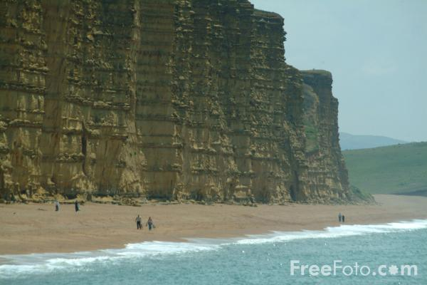 Picture of East Cliff, West Bay, Dorset - Free Pictures - FreeFoto.com