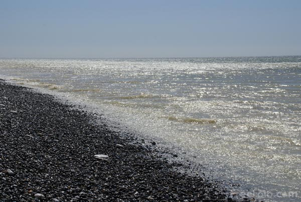 Picture of Chalk Cliff, Birling Gap, East Sussex - Free Pictures - FreeFoto.com