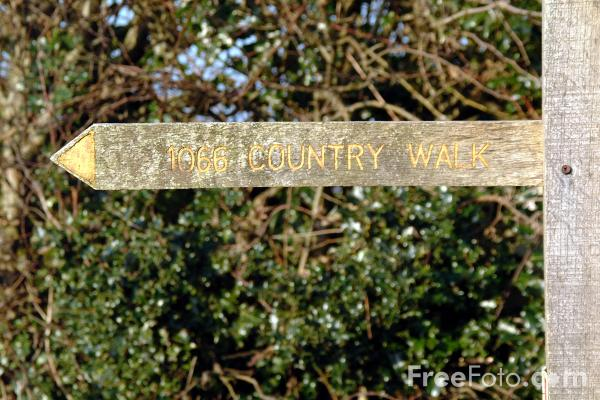 Picture of 1066 Country Walk, Winchelsea - Free Pictures - FreeFoto.com