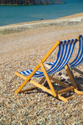 Image Ref: 1015-13-65 - Deck chairs, Brighton seafront, Sussex, Viewed 3739 times