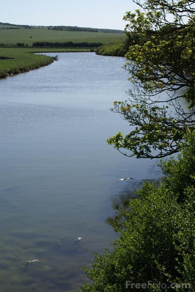 Picture of River Dudwell, Seven Sisters Country Park, Sussex - Free Pictures - FreeFoto.com