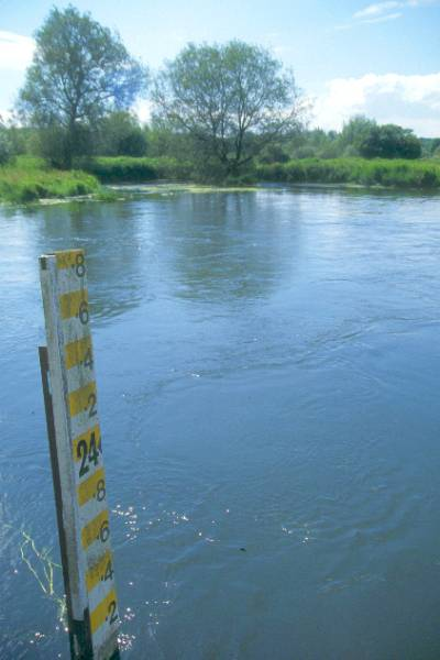 Picture of River Avon, Bickton Mill - Free Pictures - FreeFoto.com