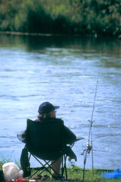 Picture of Fishing, Bickton Mill - Free Pictures - FreeFoto.com