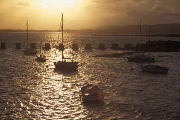 Picture of Hayling Island - Free Pictures - FreeFoto.com