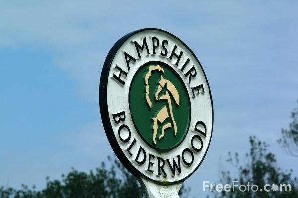 Picture of Road Sign, New Forest, Hampshire - Free Pictures - FreeFoto.com