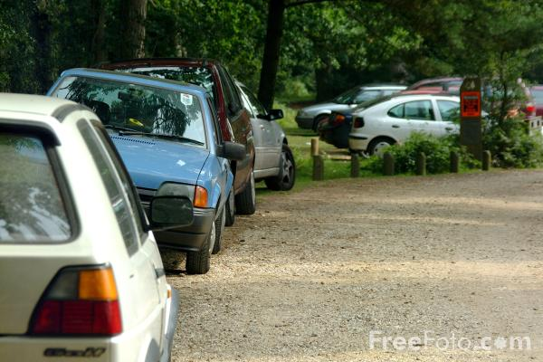 Picture of Car Park, The New Forest, Hampshire - Free Pictures - FreeFoto.com