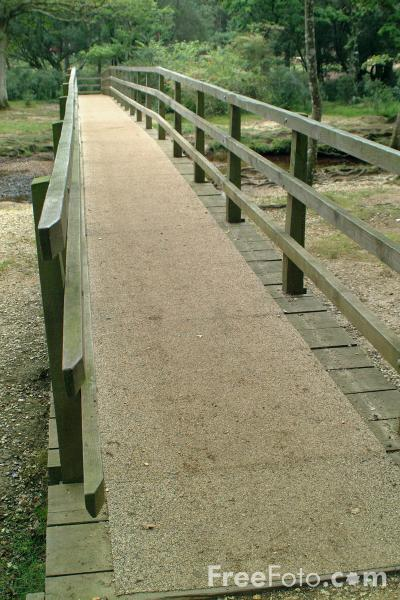 Picture of Bridge, The New Forest, Hampshire - Free Pictures - FreeFoto.com