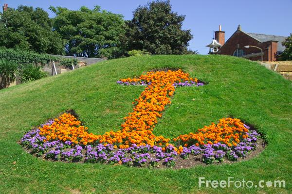 Picture of Floral Anchor - Free Pictures - FreeFoto.com