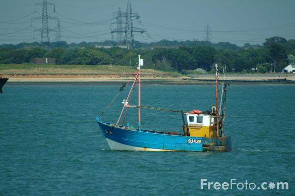 Picture of Fishing Boat, Solent Water, Hampshire - Free Pictures - FreeFoto.com
