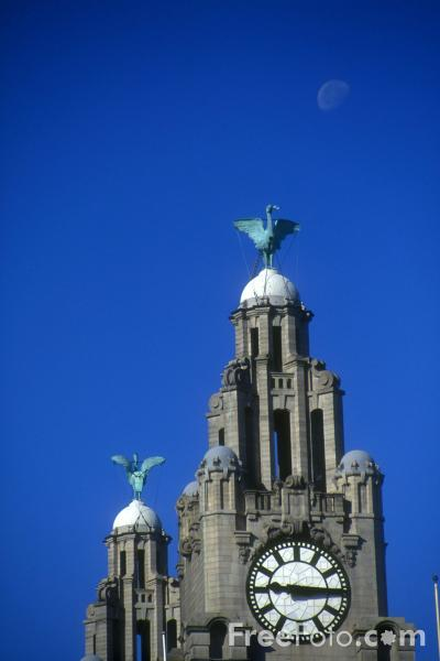 Picture of The Liver Building, Pier Head, Liverpool - Free Pictures - FreeFoto.com