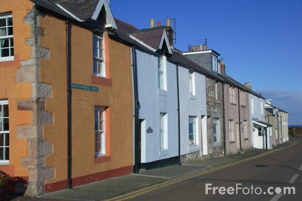 Picture of Craster, Northumberland - Free Pictures - FreeFoto.com