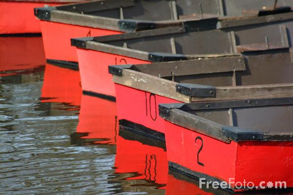 Picture of Rowing Boats, River Wansbeck, Morpeth - Free Pictures - FreeFoto.com
