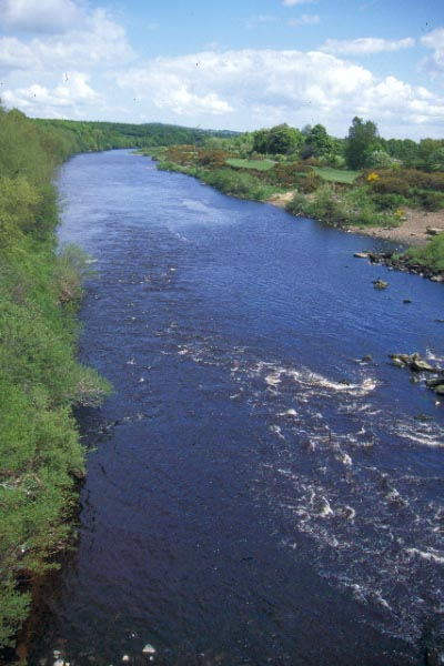 Picture of River Tyne, Ovingham - Free Pictures - FreeFoto.com