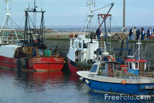 Picture of Fishing Boat, Seahouses Harbour, Northumberland - Free Pictures - FreeFoto.com