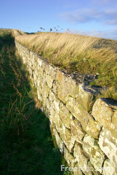 Picture of Hadrians Wall - Free Pictures - FreeFoto.com
