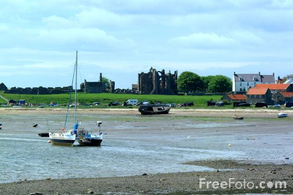 Picture of Holy Island Harbour - Free Pictures - FreeFoto.com