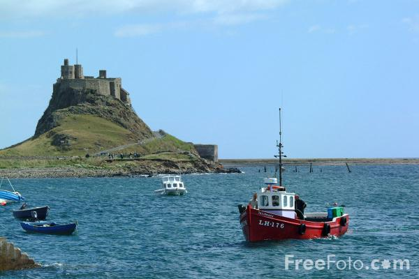 Picture of Fishing Boat, Holy Island Harbour - Free Pictures - FreeFoto.com