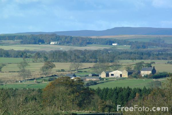 Picture of Bolam, Northumberland - Free Pictures - FreeFoto.com