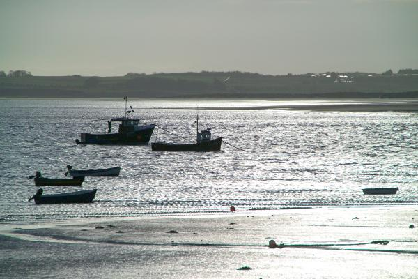 Picture of Holy Island and Lindisfarne - Free Pictures - FreeFoto.com